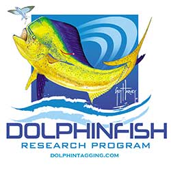 dolphinfish research2
